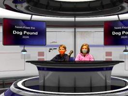 News from the Dog Pound Dec 15th